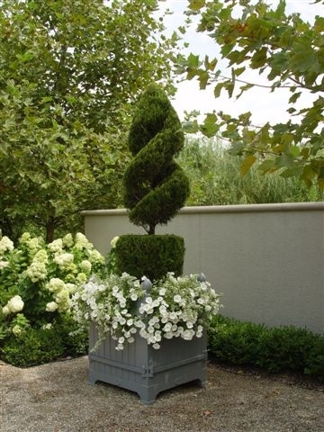 Home garden traditional topiary